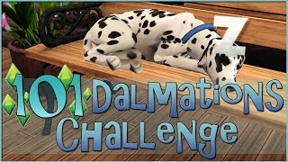 Sims 3 || 101 Dalmatians Challenge: First Puppy Adoptions - Episode #27