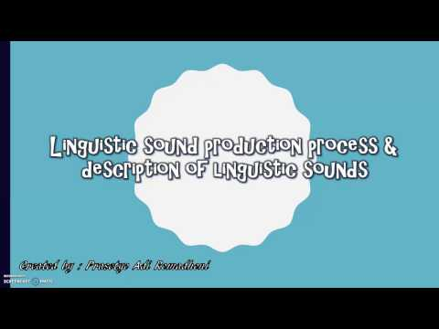 Linguistic Sound Production Process and Description of Linguistic Sounds