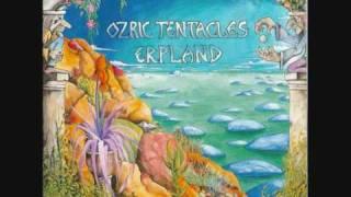 Ozric Tentacles - Eternal Wheel