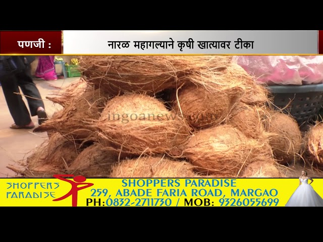 Coconut prices go up steeply due to Ganesh Festival