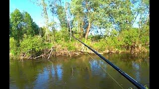 СПИННИНГ с берега 2020 Судак на ДЖИГ Рыбалка на спиннинг