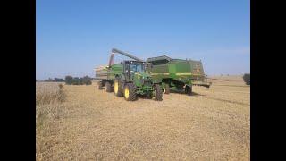 Żniwa 2018 - pszenica najsłabsze pole/ John Deere 2256 & John Deere 6110MC/ Kula