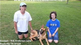 Dog Trainer Nashville