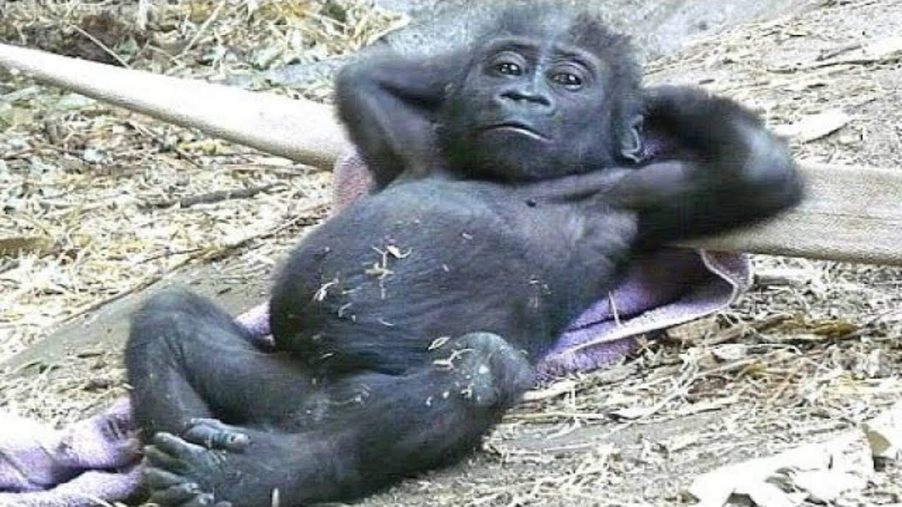 Naked mature women selfies