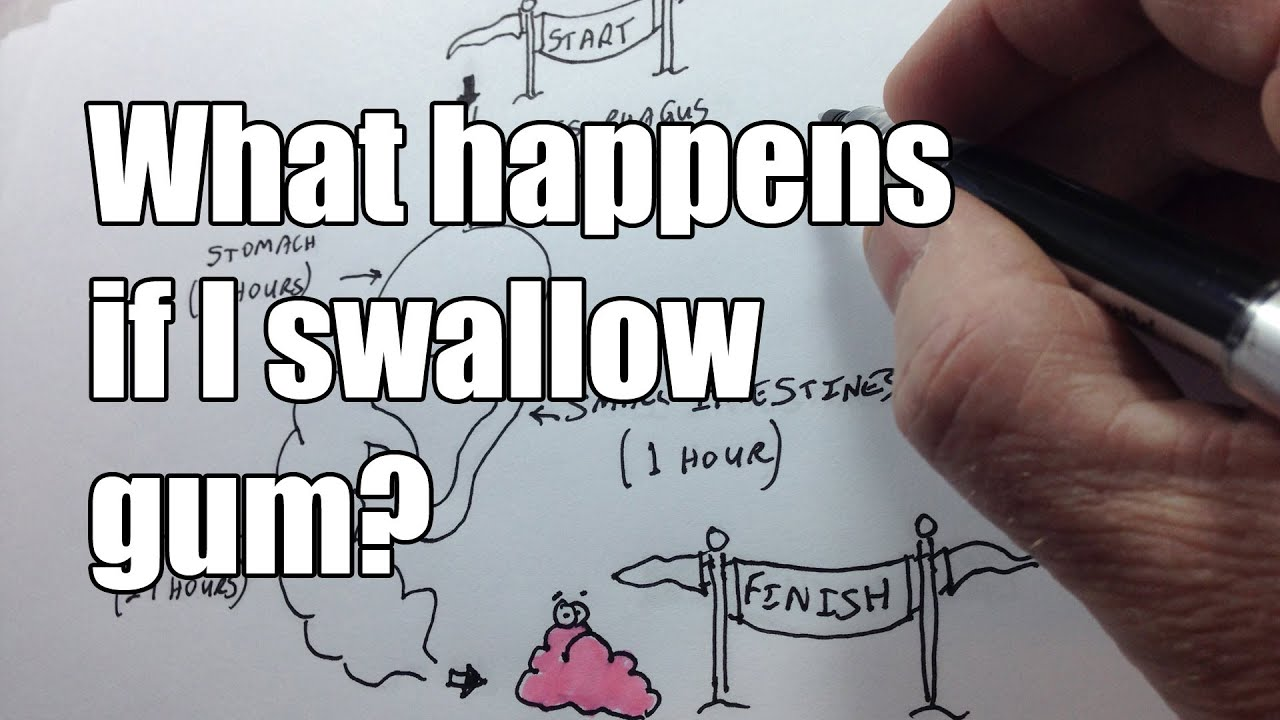 What Will Happen If You Swallow Gum 118