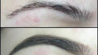 longest lasting waterproof eyebrow routine ft makeup forever aqua brow