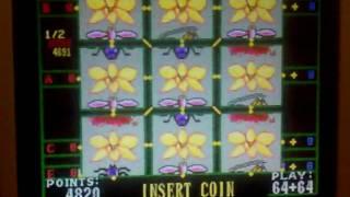 Super Butterfly 2000 v7 64+64