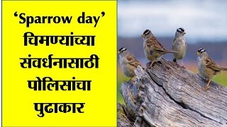 Today World Sparrow day