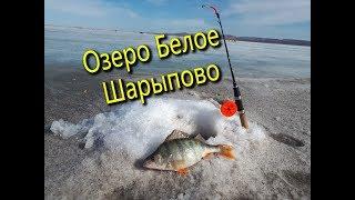 Рыбалка в Шарыпово на озере Белое Часть 1