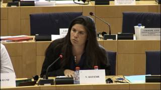 Intervention de Virginie Rozière en Commission IMCO