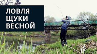Рыбалка на щуку Весна в самом разгаре Щука атакует