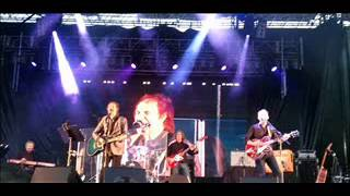 Acute Schizophrenia Paranoia Blues (live)  Ray Davies