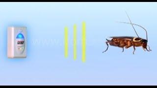 Отпугиватель насекомых и грызунов