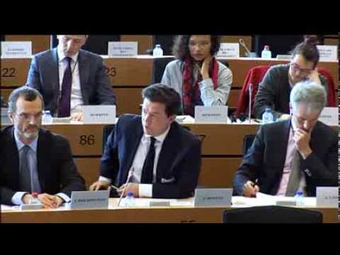 Hearing on TTIP/Financial Services Regulation, European Parliament