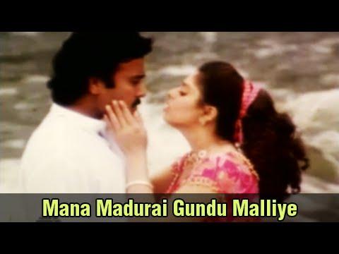 Mana Madurai Gundu Malliye - Karthik, Nagma - Mettukudi - Tamil Romantic Song