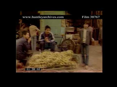 Candid shots of a city in China in the 1980's.  Archive film 38767