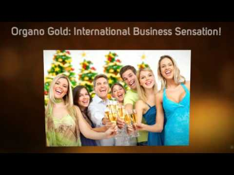 Vote No on   ernational Scams  Here are the      organo gold scam Organo Gold King of Coffee or International Business Sensation