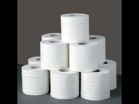 TOILET TISSUE MANUFACTURING AND FIJI AIRWAYS 5 YEAR PLAN