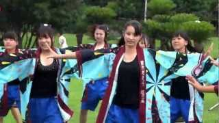 Shonan Institute of Technology High School Dance Club 「南中ソーラン」