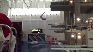 The Best Dives of the 2013 British Gas Diving Chionships