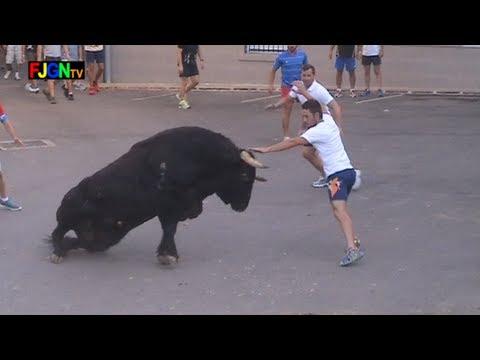 3 Toros de Sants de la Pedra 2013 - La Vilavella (Castellon) Bous al carrer [Toros FJGNtv]
