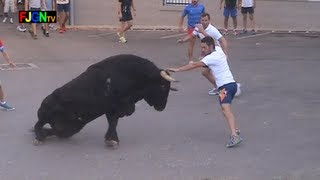 Repeat youtube video 3 Toros de Sants de la Pedra 2013 - La Vilavella (Castellon) Bous al carrer [Toros FJGNtv]