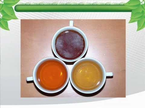 green-tea-benefits:-the-benefits-tea-can-offer-one's-body