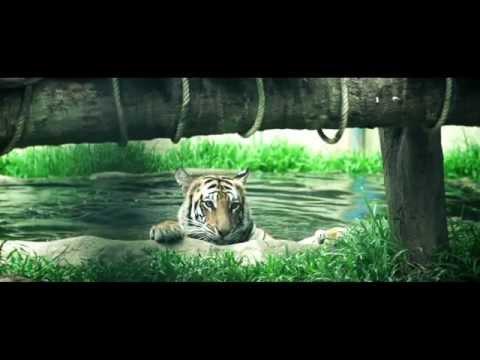 Yangon Zoo - Produced By Arkar Production