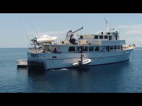 Mothership Fishing Charter To The Outer Great Barrier Reef, Whitsundays