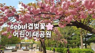 서울겹벚꽃 어린이 대공…
