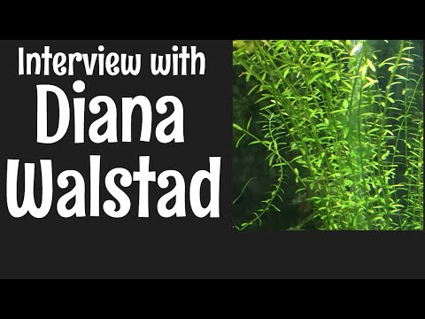 Interview with Diana Walstad, Author of Ecology of the Planted Aquarium