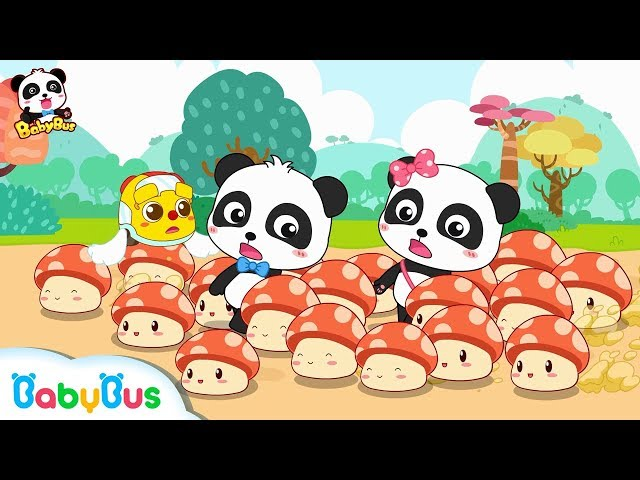 Where Do Mushroom Fairies Take Baby Panda to? | Math Kingdom Adventure | BabyBus