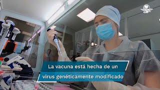 Los ensayos, en los que participaron 1.077 personas, mostraron que genera anticuerpos y las llamadas células T que pueden combatir el coronavirus. Queda por demostrar su eficacia contra el virus en la siguiente fase del ensayo.