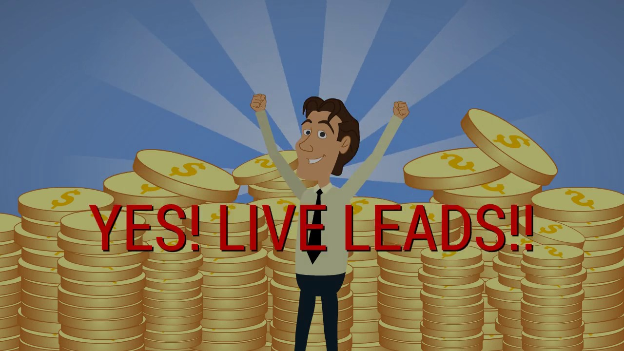 Image result for live transfer leads