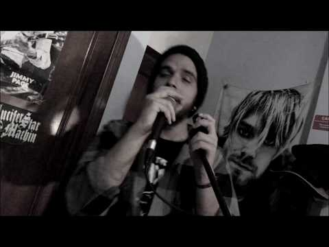 Seether - Let You Down Vocal Cover