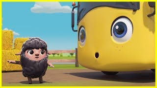 Buster and the Baa Baa Rainbow Sheep | Go Buster Nursery Rhymes | Episode | ABCs and 123s