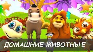 Русский язык для начинающих.Bидео для детей. Домашние животные