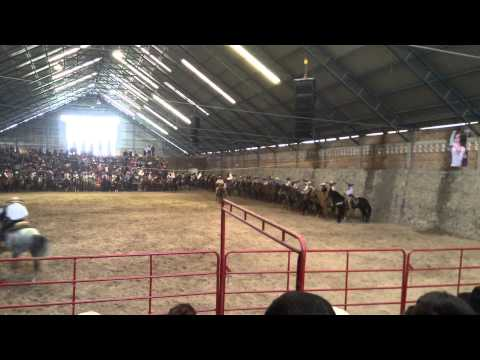 Pa Caballos San Miguel el Alto 2015