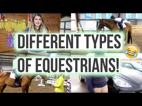 Different Types of Equestrians | Equestrian Prep