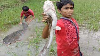 Amazing Hand Fishing - Smart Boys Catching Big Fish By Hand @Amazon Fishing