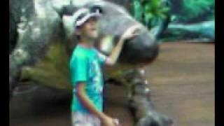 видео Динопарк Рекс в Анапе — Движущиеся динозавры на курорте Анапа