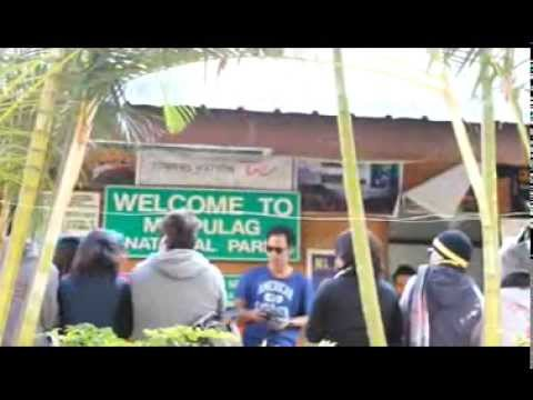 BACKPACKER(documentary/thesis) mpeg4