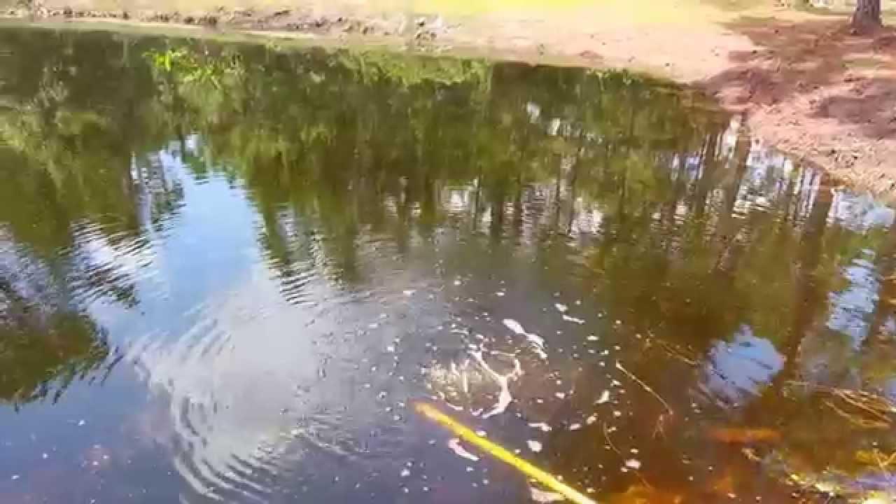 Simple venturi for pond aeration youtube for Koi pond venturi