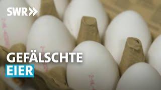 Gefälschte Eier - Wie uns die Industrie austrickst | SWR betrifft