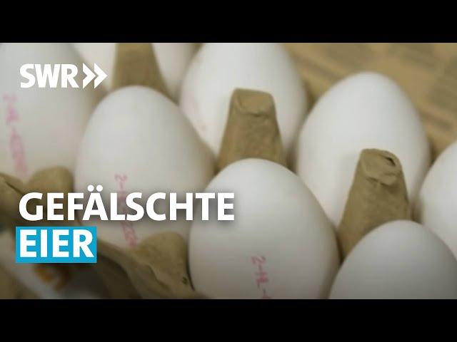 Gefälschte Eier - Wie uns die Industrie austrickst   SWR betrifft