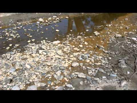 Gold King mine leftovers