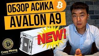 Майнинг биткоина: Обзор асик майнера Avalon A9 на 30 TH/s (терахэш). Сравнение с конкурентами