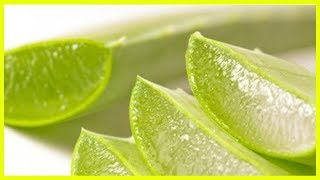 Homemade Natural Treatments to Whiten Teeth