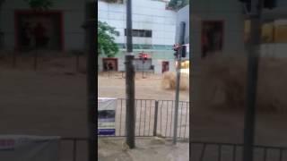 TOPick - 歷來首次10月發黑雨 柴灣道水浸 thumbnail