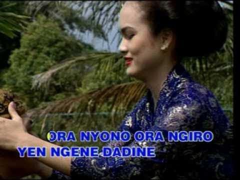 Mawar Biru - Nurhana